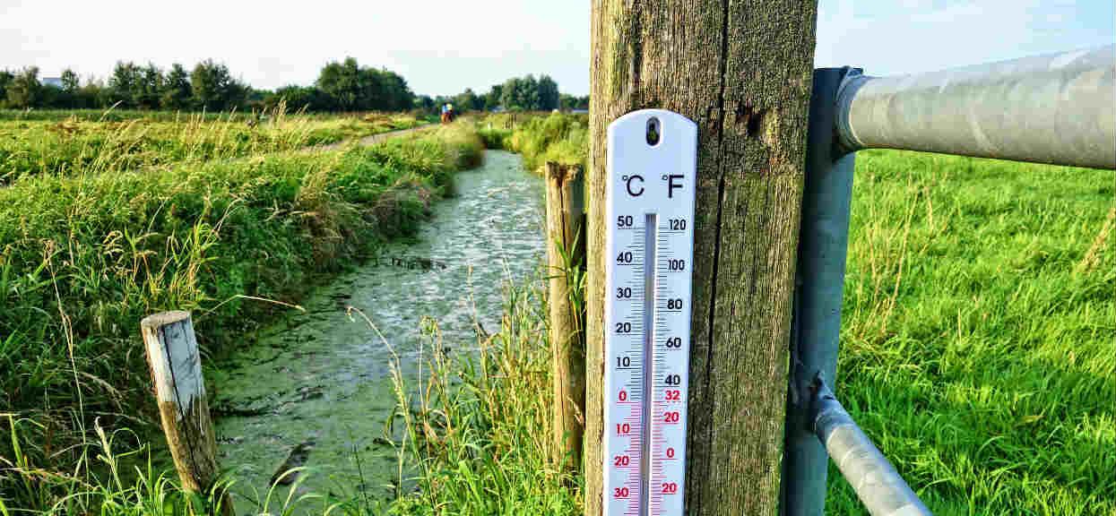 Wspaniała prognoza pogody na niedzielę! Jutro wszyscy odetchniemy z ulgą