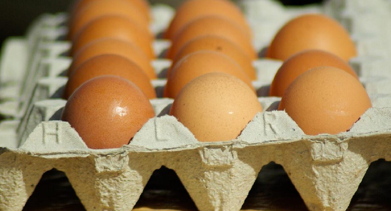 Jajka z NAJPOPULARNIEJSZEJ sieci sklepów w Polsce są SKAŻONE! Pilnie je wyrzućcie