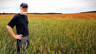 Ile wynosi emerytura rolnicza? Czy można przejść na nią wcześniej?