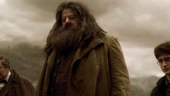 Harry Potter: aktor wylądował na wózku inwalidzkim