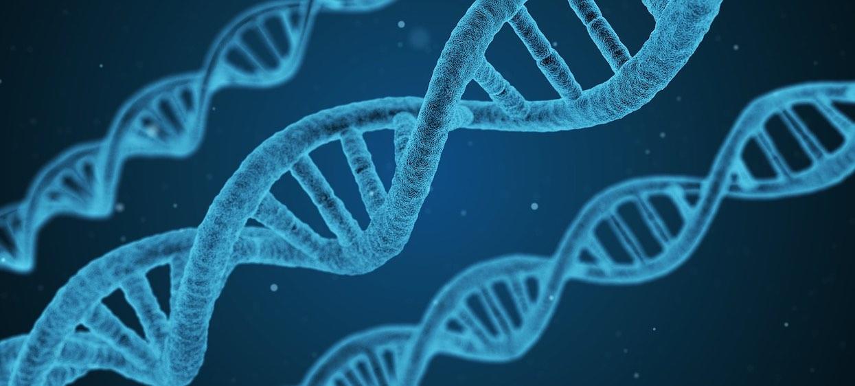 Kiedy jest Dzień DNA i co się wtedy świętuje?