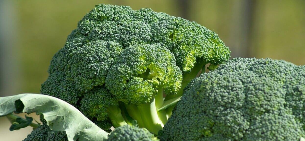 Jak ugotować brokuły? Szybko i smacznie