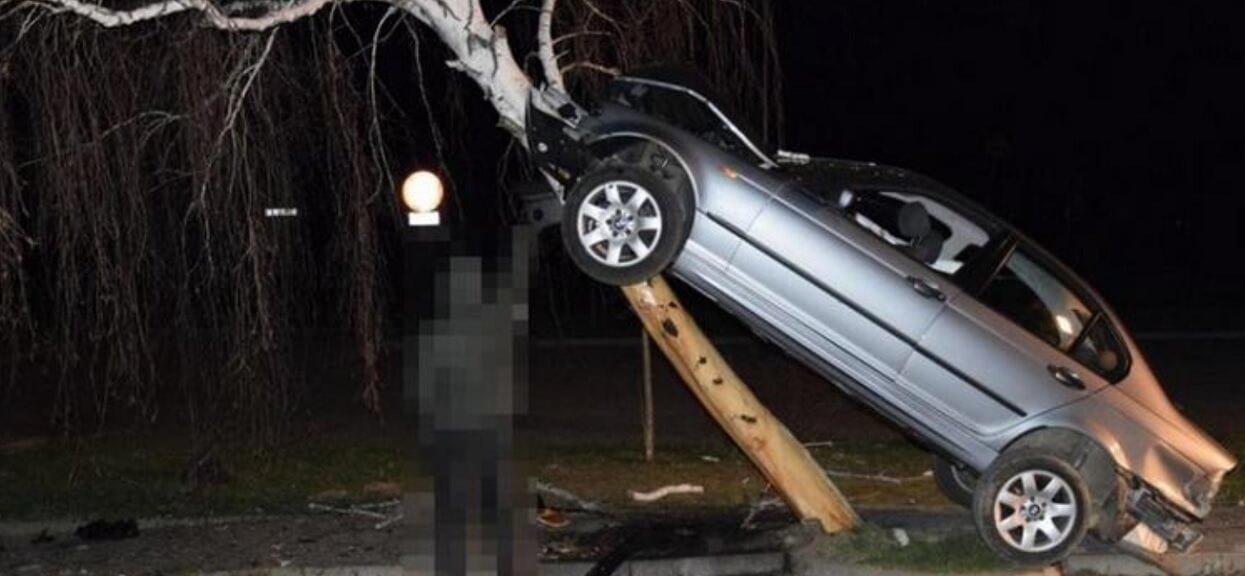 Policja nie mogła w to uwierzyć. Pijany 21-latek wjechał na drzewo