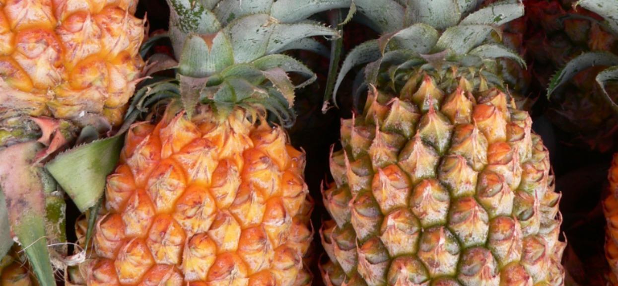 Jak obrać ananasa? Najlepszy sposób jest najprostszy