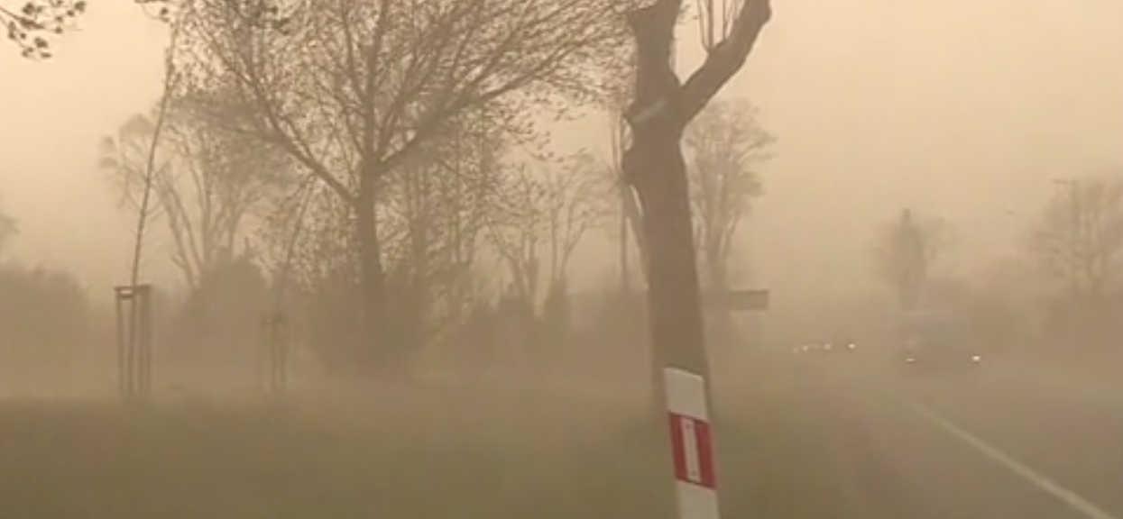 Burza piaskowa dotarła do Europy. Już dzisiaj może uderzyć w Polskę