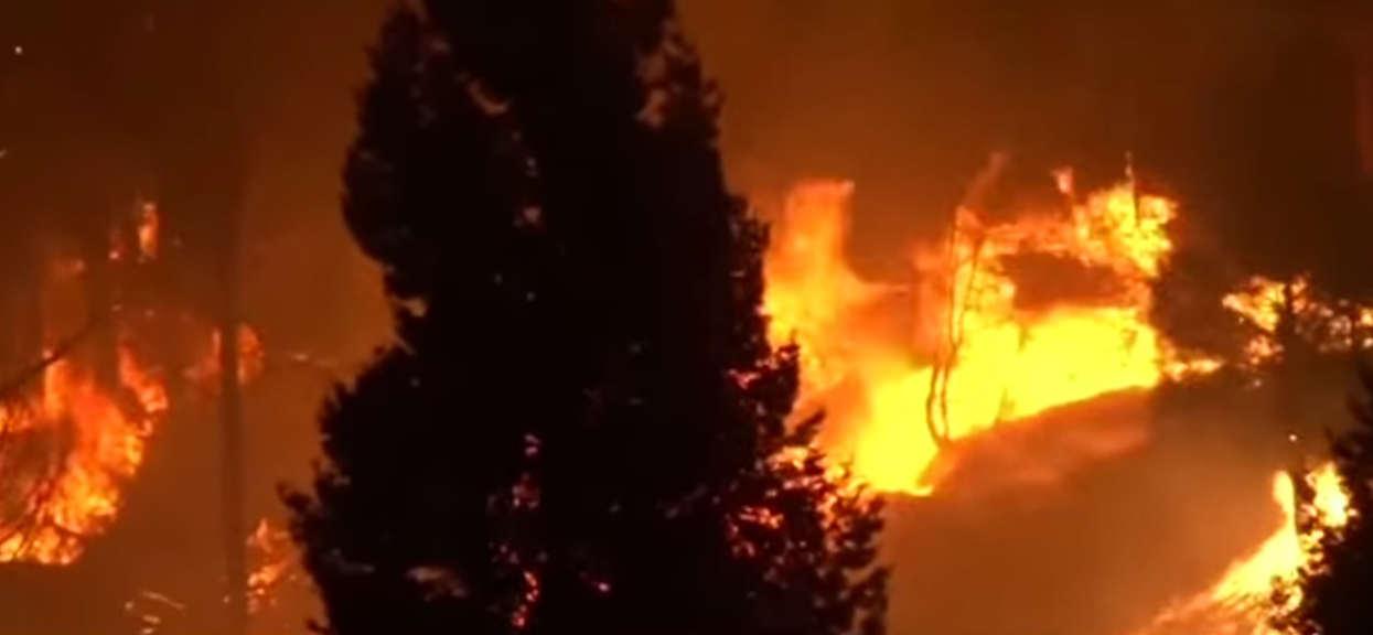 Profesor ostrzega, że w Polsce może wydarzyć się kataklizm, który spustoszył Kalifornię