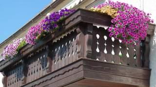 Kwiaty na balkonie - pomysły na aranżację balkonu w bloku