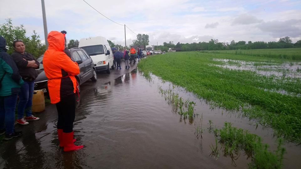 Tłumy zebrały się, aby pomóc w zalanym schronisku