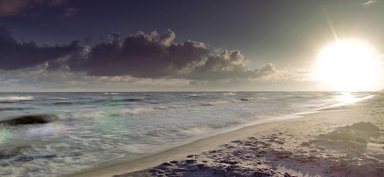 Gdzie będą sinice na Bałtyku? Sprawdź ubiegłoroczną mapę