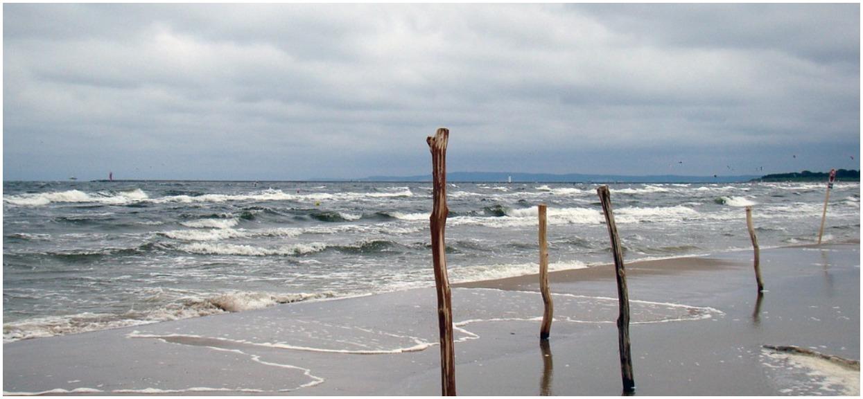 Przerażające znalezisko na plaży. Leżały dziesiątki ciał, niektóre już mocno rozłożone