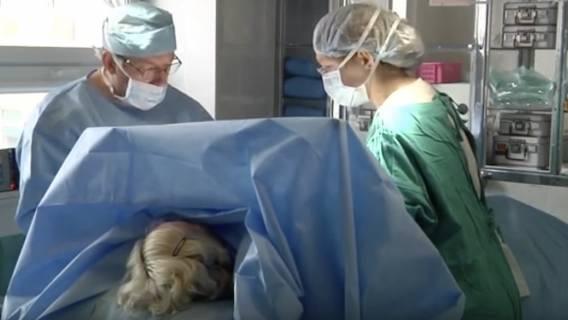 Ile zarabia chirurg plastyczny - zdjęcia z operacji