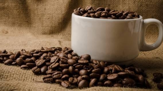 Najdroższa kawa