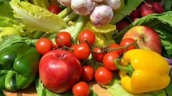 Weganizm a wegetarianizm. Zdjęcie wegan