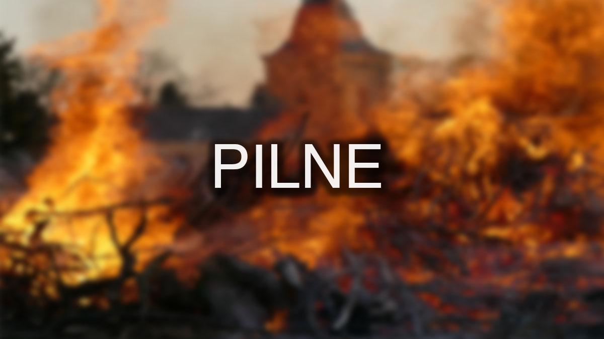 Płonie 40 hektarów pod Warszawą! 100 strażaków walczy z kataklizmem