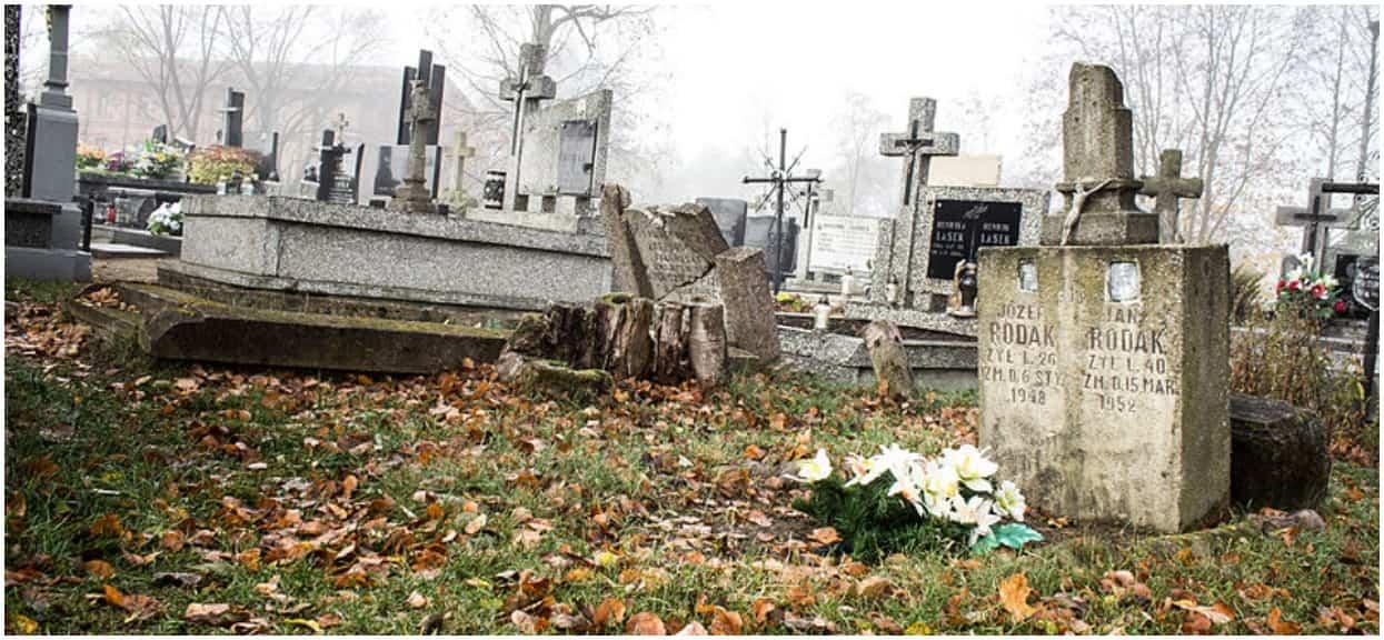 13-letni Romek przed laty został zabity w okrutnych okolicznościach. Teraz nieznani sprawcy zniszczyli grób chłopca