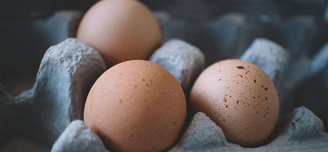Wielu nie zwraca na nie uwagi. Co oznaczają numery na jajkach? Pierwsza cyfra jest najważniejsza