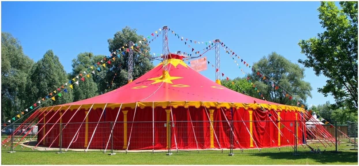 Ten cyrk zachwycił ludzi z całego świata. Dzięki nowoczesnemu rozwiązaniu nie męczy zwierząt