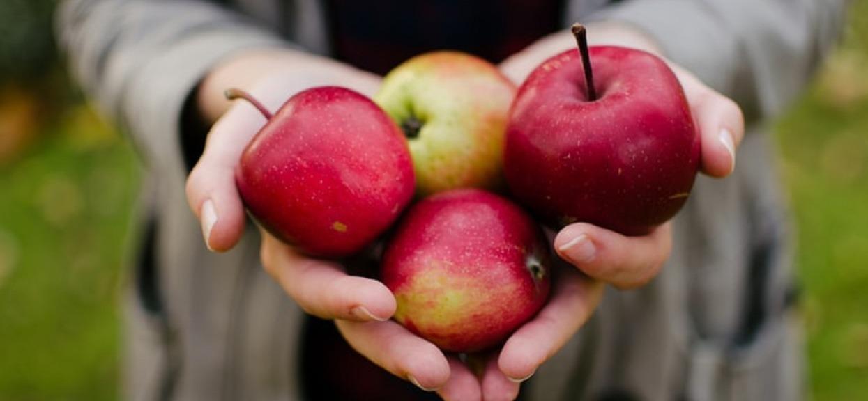 Efekt 7-dniowej diety jabłkowej jest nieziemski. Przez ważny szczegół można ją stosować tylko kilka razy w życiu