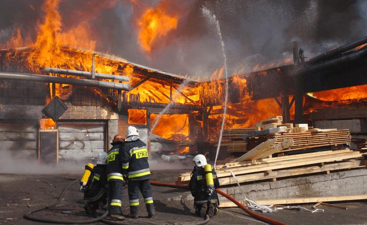 Druzgocące informacje. Ogromny pożar, rodzina gwiazdora TVP straciła dobytek, spłonęły też będące w środku zwierzaki