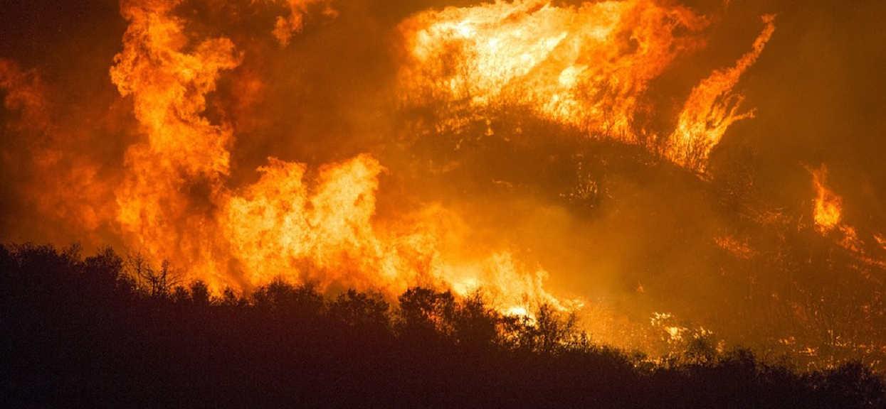 Nie tylko Amazonia. Lasy Afryki również płoną, zdjęcia satelitarne zapierają dech