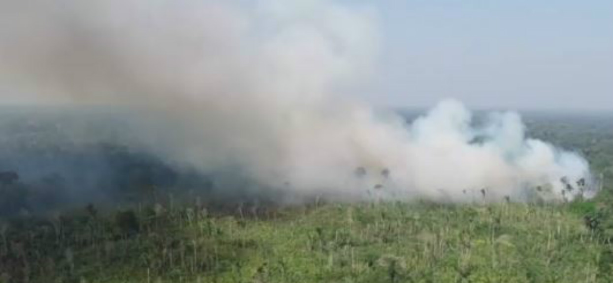 Puszcza Amazońska płonie w zatrważającym tempie. Dym widać już z kosmosu