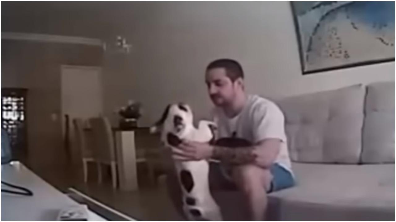 Miała wziąć z nim ślub. Gdy przypadkiem zobaczyła, co robi z jej psami, zdruzgotana odwołała wszystko