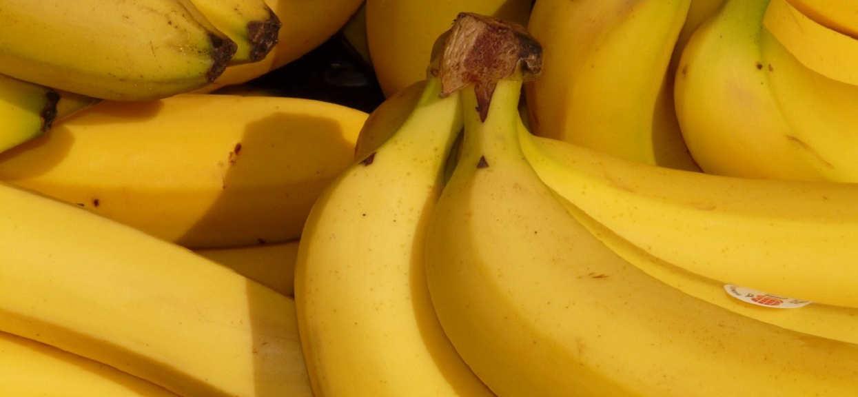 Co się stanie, jak włączysz do diety 2 banany dziennie? Efekty przechodzą najśmielsze oczekiwania