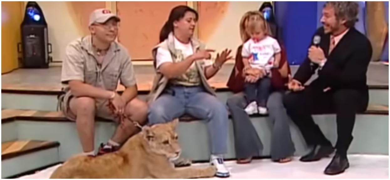 Dziecko i lew występowali razem w telewizji. Nagle zadziały się sceny, które nie miały prawa się wydarzyć