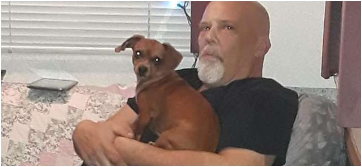 Pies wyczuł, że jego pan umiera. Zachował się w niemal ludzki sposób, wyraz jego oczu mówi wszystko