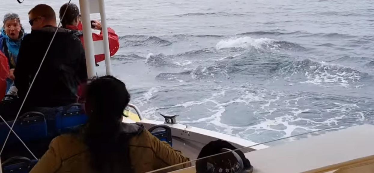 Kobieta nagrywała spokojne morze. Nagle łódka skręciła i pojawił się widok, którego nie zapomni do końca życia