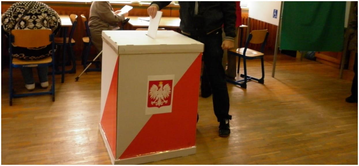 Sondaż: 47% dla PiS. Koalicja Obywatelska daleko w tyle