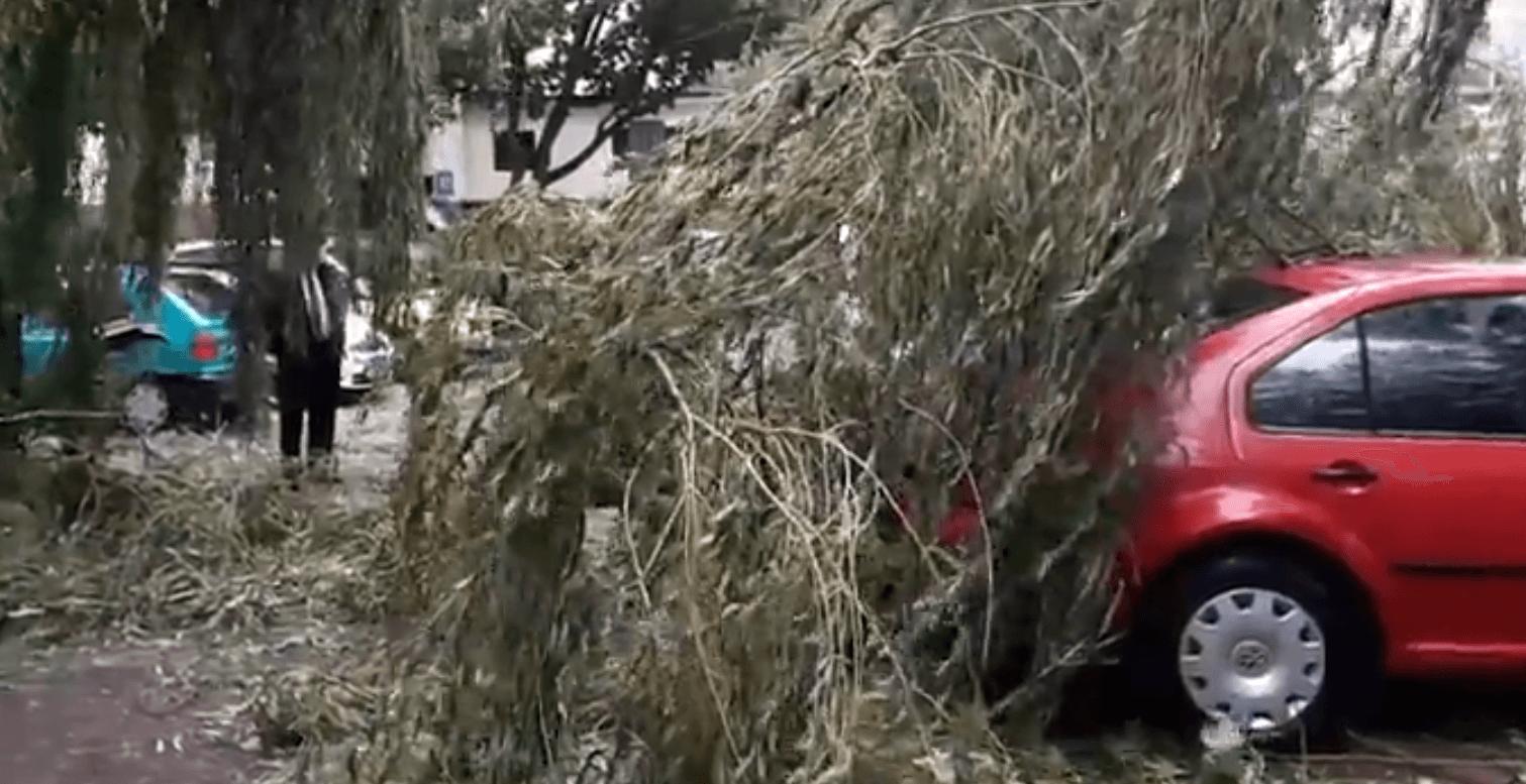 TVN: Koszmarne skutki dzisiejszej ulewy. Dwie osoby ranne, setki powalonych drzew