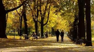 Znaki zodiaku, które czeka wspaniała jesień. Bujne życie towarzyskie i miłosne, a na niektórych czeka sowita podwyżka