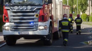Całą noc kilkanaście zastępów straży pożarnej walczyło z ogniem. Nie żyje 2,5 tys. zwierząt