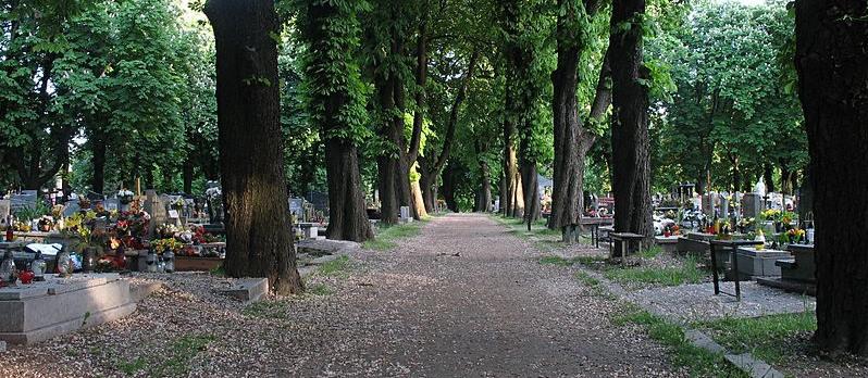 Poszli na cmentarz i ujrzeli rozpaczliwy widok. Koszmar mieszkańców południowej Polski, służby w akcji