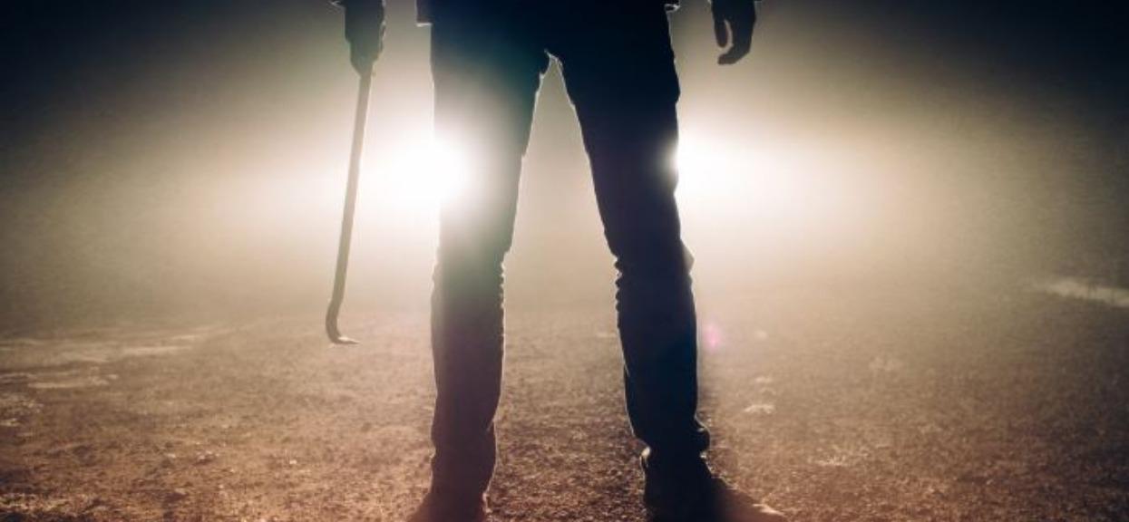 """""""Mafia rumuńskich grzybiarzy"""" terroryzuje Polaków. Służby ostrzegają: zrobią wszystko, żeby dorwać wielkie borowiki"""
