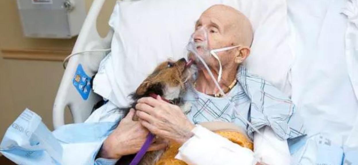 Piesek odwiedził po raz ostatni umierającego w hospicjum pana. Reakcja mężczyzny sprawiła, że wszyscy płakali