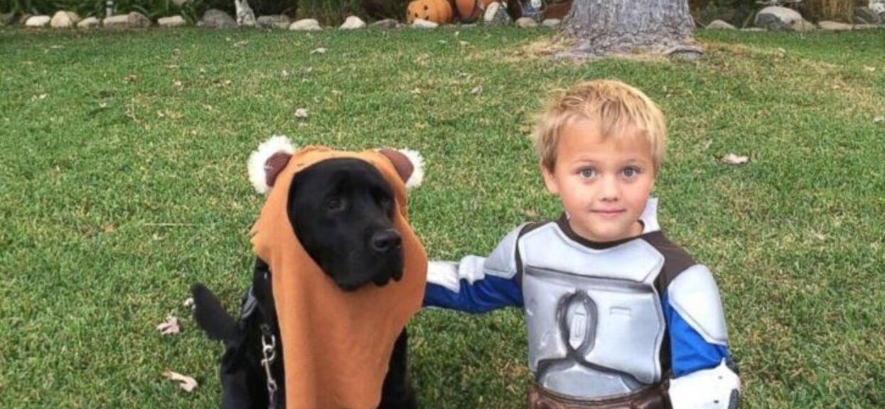 Pies obudził rodziców w środku nocy. Pobiegli za nim do pokoju 7-letniego synka, tam czekało na nich najgorsze