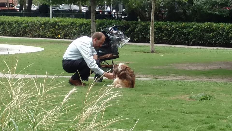 Dostrzegł w parku mężczyznę z niepełnosprawnym psem. Kiedy zobaczył, co z nim robi, od razu sięgnął po telefon