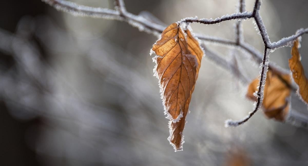 Najnowsza prognoza pogody nie jest tak dobra, jak można by się spodziewać. IMGW ostrzega przed nowym niebezpieczeństwem