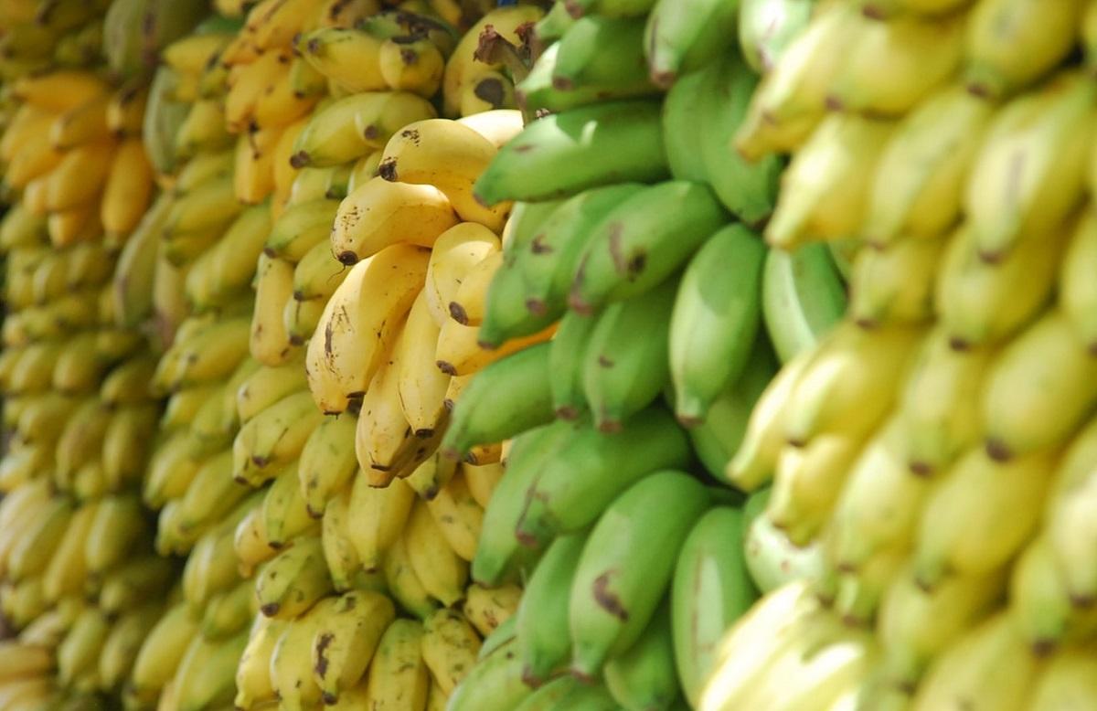 Dietetyczka przez 12 dni jadła tylko banany. Teraz promienieje, efekt diety oszałamia