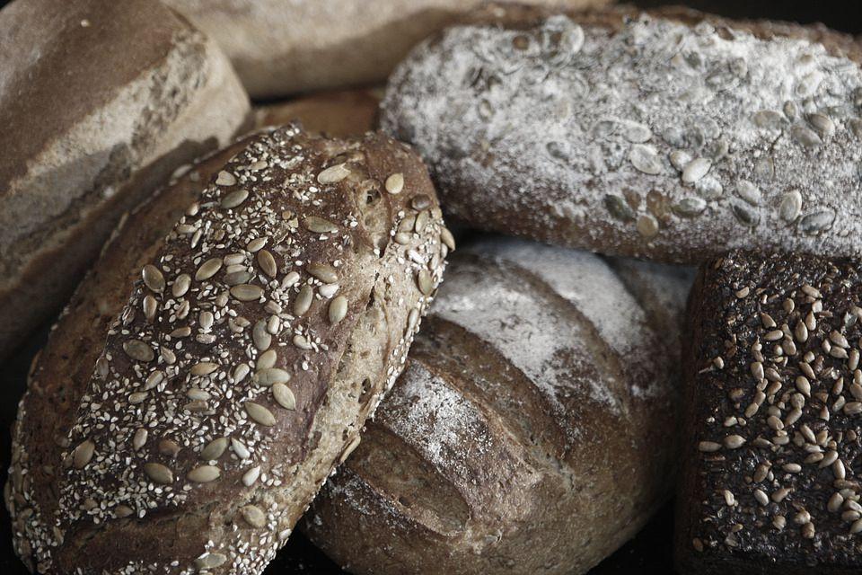 Aż strach jeść chleb. Kamery zarejestrowały, jak w piekarni maszyny razem ze zbożem pochłaniają gołębie