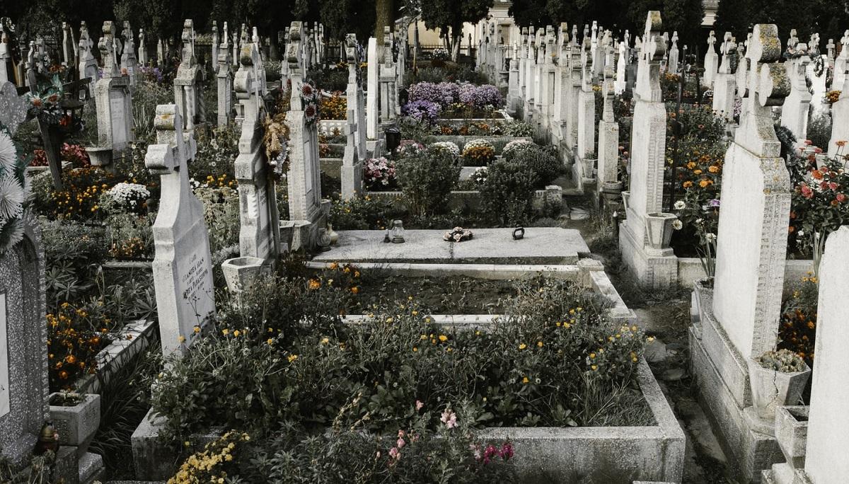 Rodzice przyszli na grób 8-letniego synka i odebrało im mowę. Ktoś dopuścił się obrzydliwego czynu, teraz apelują o pomoc