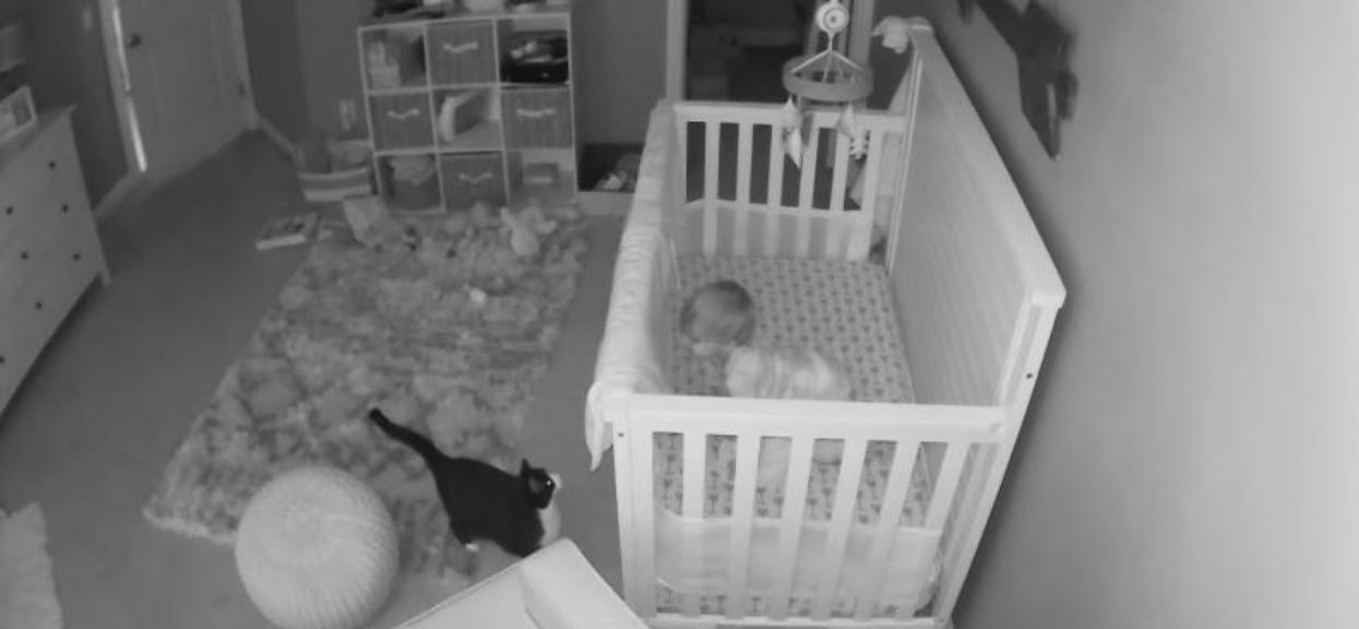 Mama zauważyła na kamerce kota, który stoi przed łóżkiem jej synka. Po chwili rozegrała się scena, po której nie mogła wytrzymać ze śmiechu