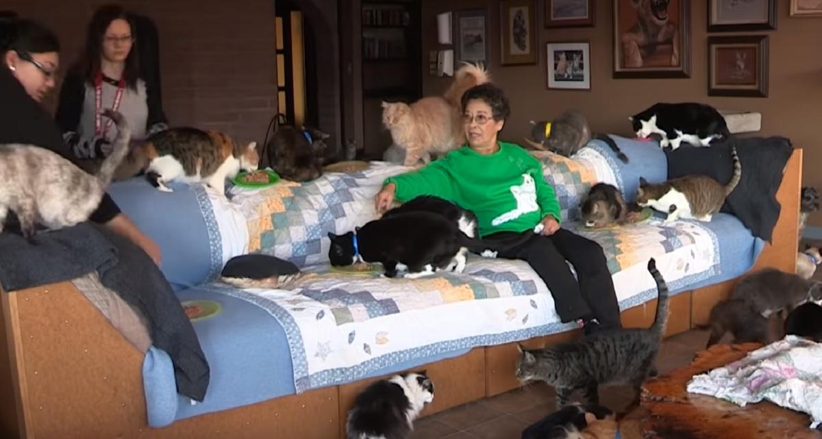 Mieszka z tysiącem kotów, została ich mamą. Widząc zdjęcia jej domu usiądziecie, ostatnie powala