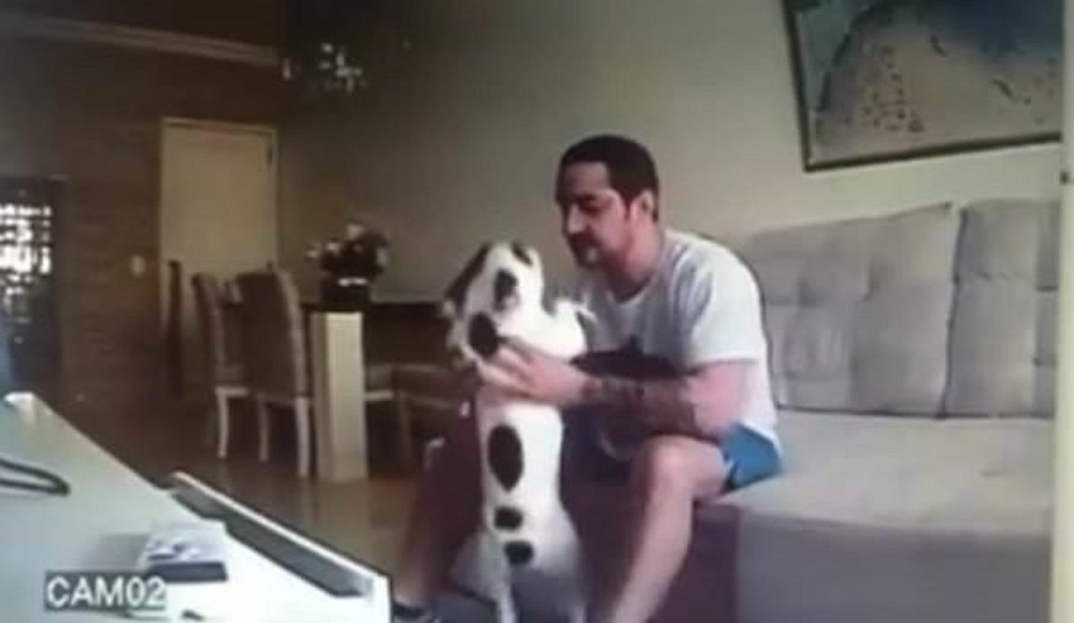 Jej psy dziwnie się zachowywały od wprowadzki narzeczonego. Zainstalowała kamerę i odkryła wstrząsającą prawdę