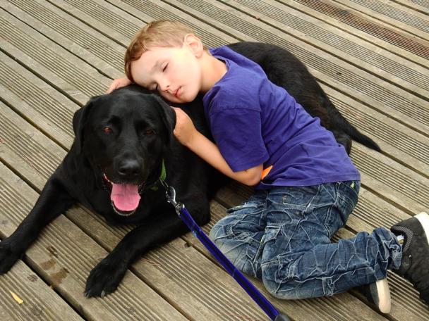 Wyjaśnił dlaczego psy żyją krócej niż ludzie. Nie mogli powstrzymać łez, słowa poruszają do granic możliwości