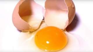 Po kolorze żółtka można rozpoznać, które jajko jest zdrowe. Wiedza, która może Cię uchronić przed poważnym zatruciem