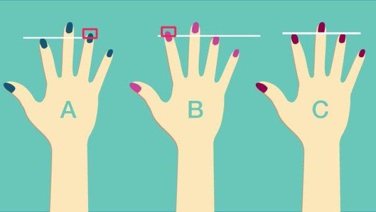 Spójrz na dłonie i ocen długość swoich palców. Mówią o Tobie dużo więcej niż mogłoby się wydawać
