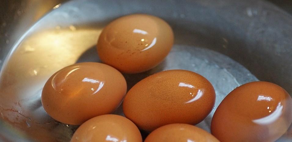 Których jajek należy unikać? Wszystko, co musisz o nich wiedzieć